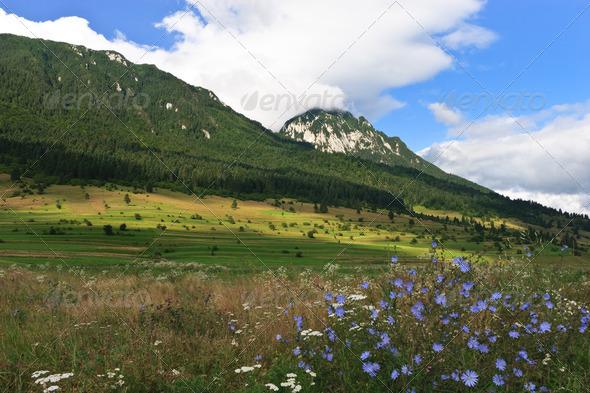mountain plain - Stock Photo - Images