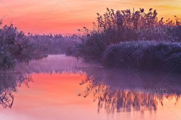 before sunrise on lake - Stock Photo - Images