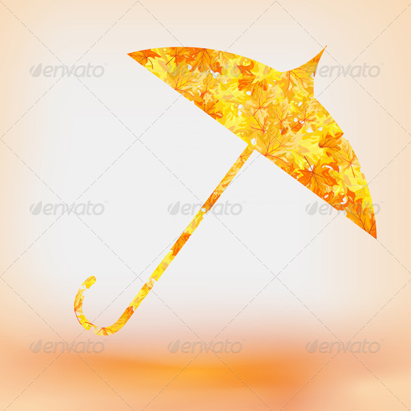 Maple Umbrella  - Seasons Nature