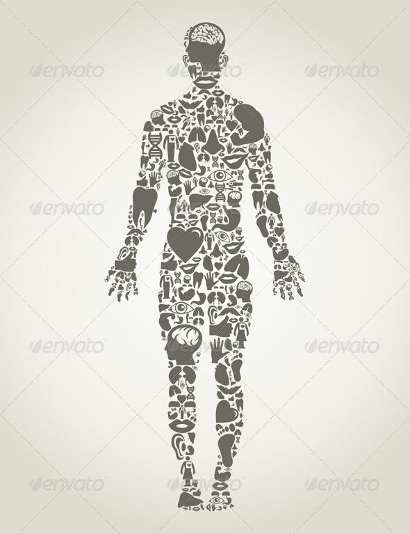 Body Parts of the Person - Health/Medicine Conceptual