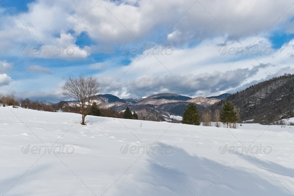 snow on a hill - Stock Photo - Images