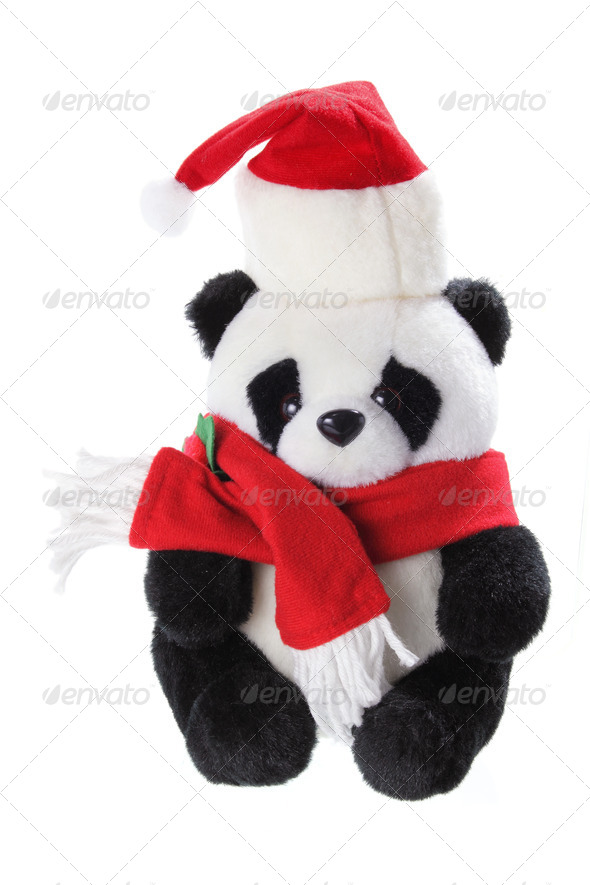 Christmas Panda - Stock Photo - Images