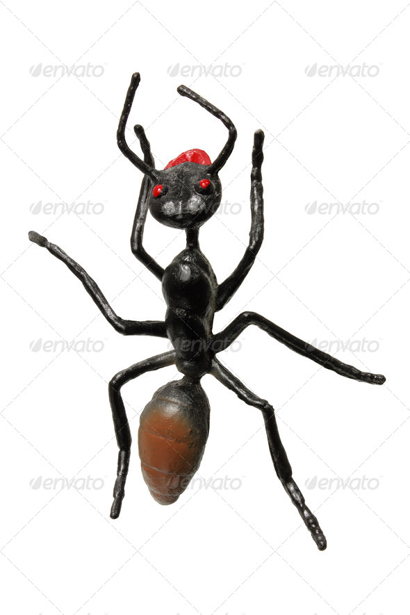 Toy Ant - Stock Photo - Images