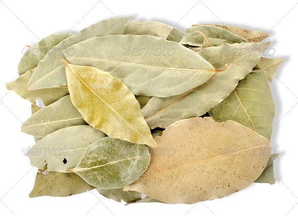 Heap bay leaves - Stock Photo - Images