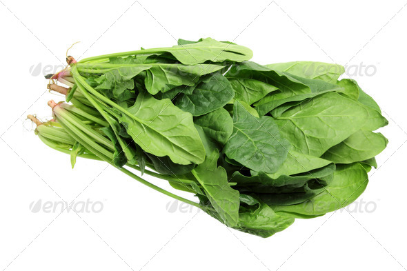 Bunches of Spinach - Stock Photo - Images