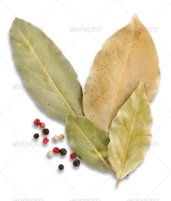 Bay leaves and spices - Stock Photo - Images