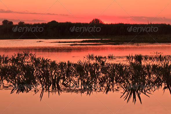 reflections on the lake - Stock Photo - Images