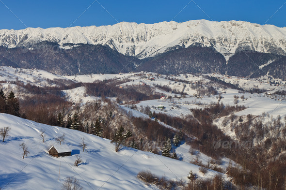 winter landscape  - Stock Photo - Images