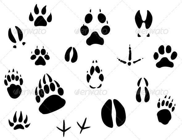 Animal Footprints - Miscellaneous Vectors