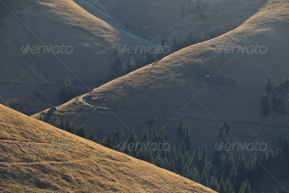 morning light on a hill - Stock Photo - Images