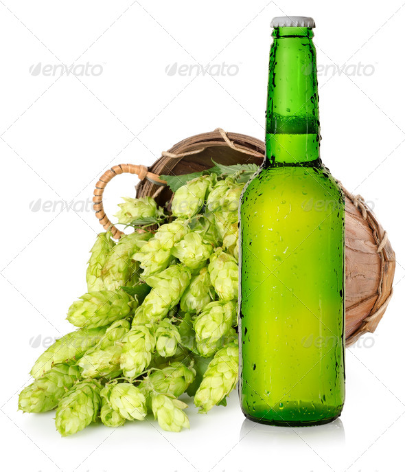 Beer and hops in basket - Stock Photo - Images
