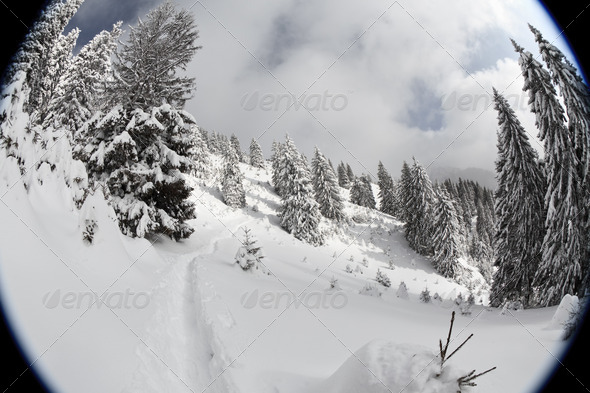 winter mountain landscape - Stock Photo - Images