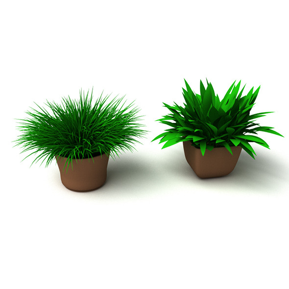 Grass Plant - 3DOcean Item for Sale