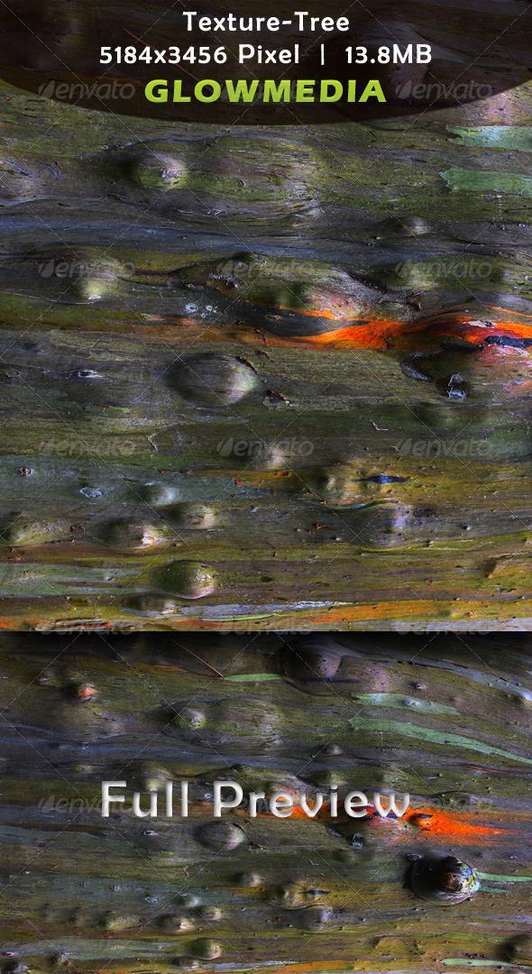 Tree Texture - Nature Textures