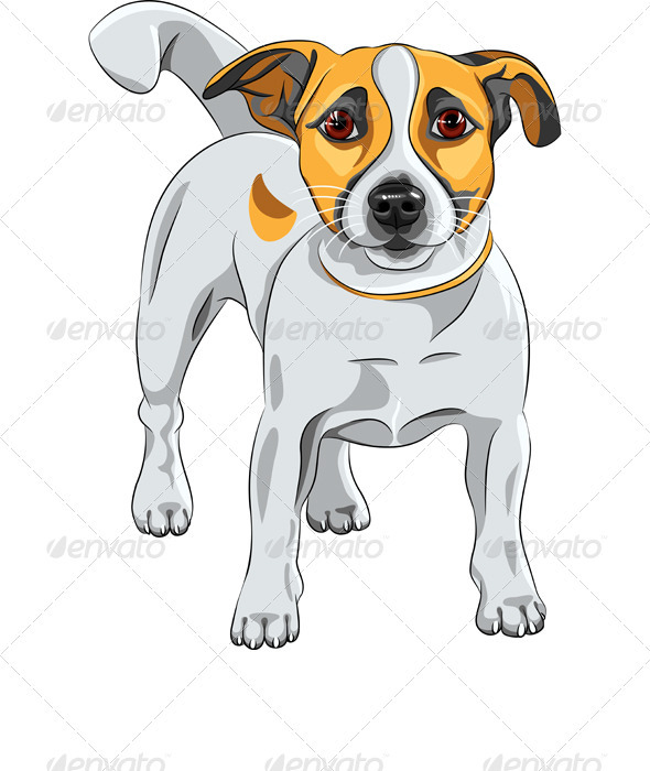 Vector Sketch dog Jack Russell Terrier Breed  - Animals Characters