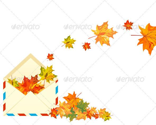 Autumn Maple - Seasons Nature