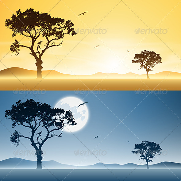 Day and Night Landscapes - Landscapes Nature