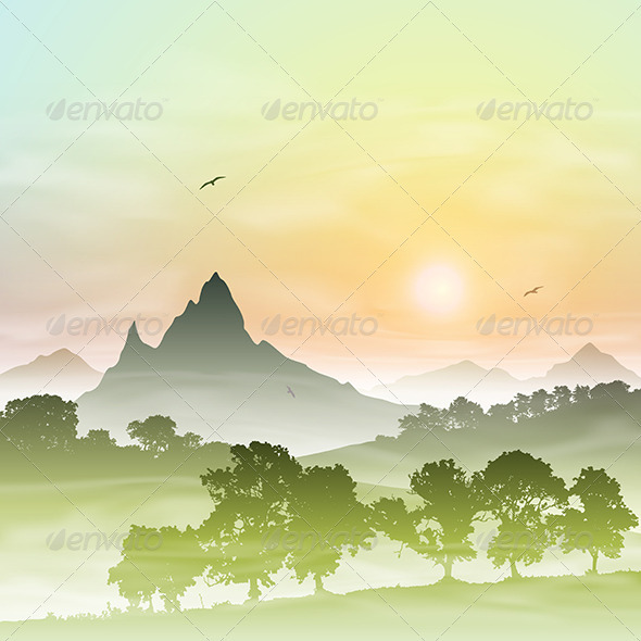 Misty Forest Landscape - Landscapes Nature