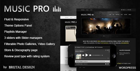 Music Pro - Music Oriented WordPress Theme - Music and Bands Entertainment