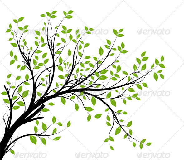 Vector Tree Branch Silhouette Over White - Characters Vectors