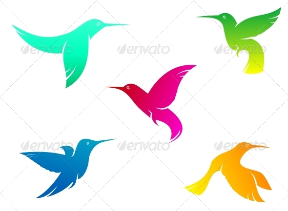 Flying Color Hummingbirds - Animals Characters
