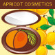 Apricot Powder Case - GraphicRiver Item for Sale