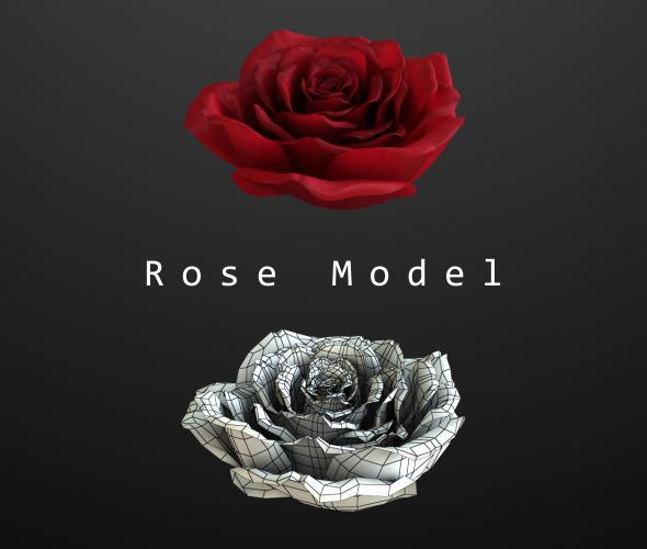 Rose Model By Bank508 3docean
