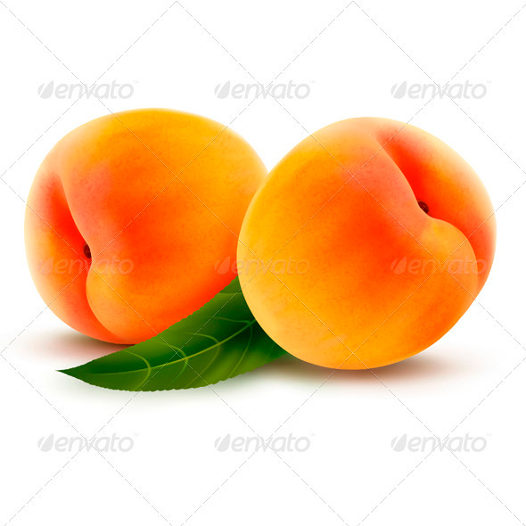 Two Fresh Peaches - Vector - Food Objects