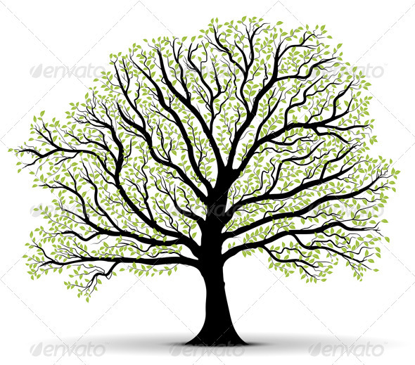 Big Vector Tree Illustration Silhouette - Nature Conceptual