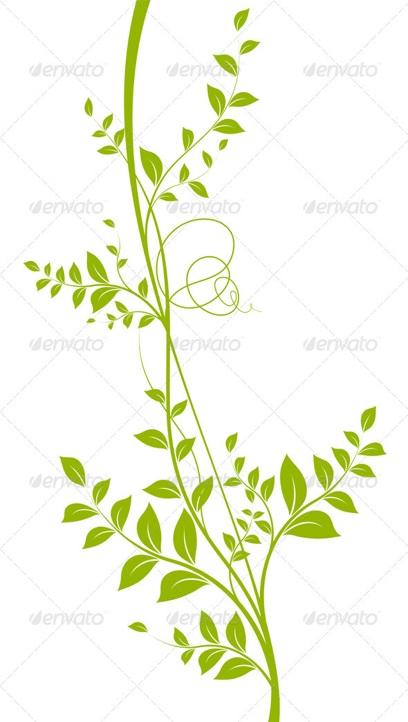 Green Vector Liana Over White - Plant Silhouette - Flowers & Plants Nature