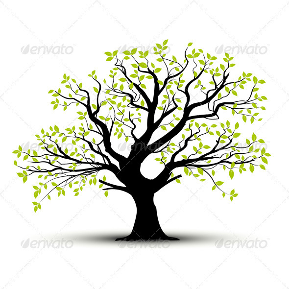 Vector Tree in Spring, Green Foliage - Nature Conceptual