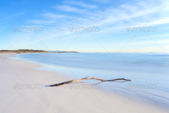 Wood branch on a white beach on sunset time - Stock Photo - Images