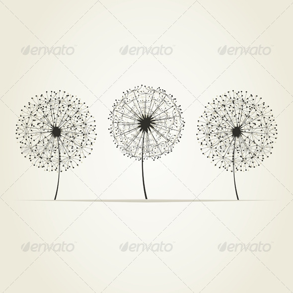 Three Dandelions - Flowers & Plants Nature