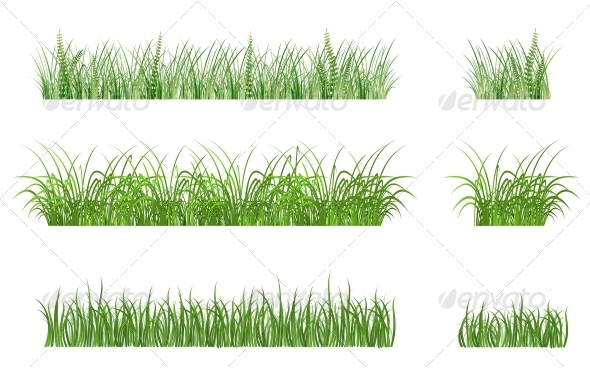 Green Grass Patterns - Flowers & Plants Nature