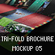 Tri Fold Brochure Mockup 05 - GraphicRiver Item for Sale