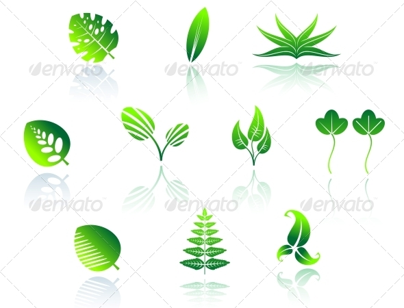 Set of Leaf Icons - Decorative Symbols Decorative
