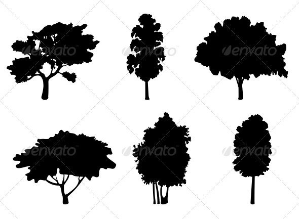 Tree Silhouettes - Flowers & Plants Nature