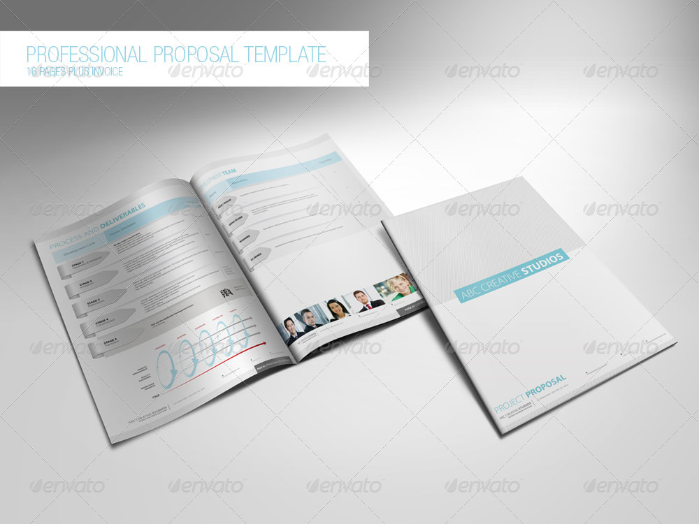 Professional Proposal Template By Feeltheblue Graphicriver Professional
