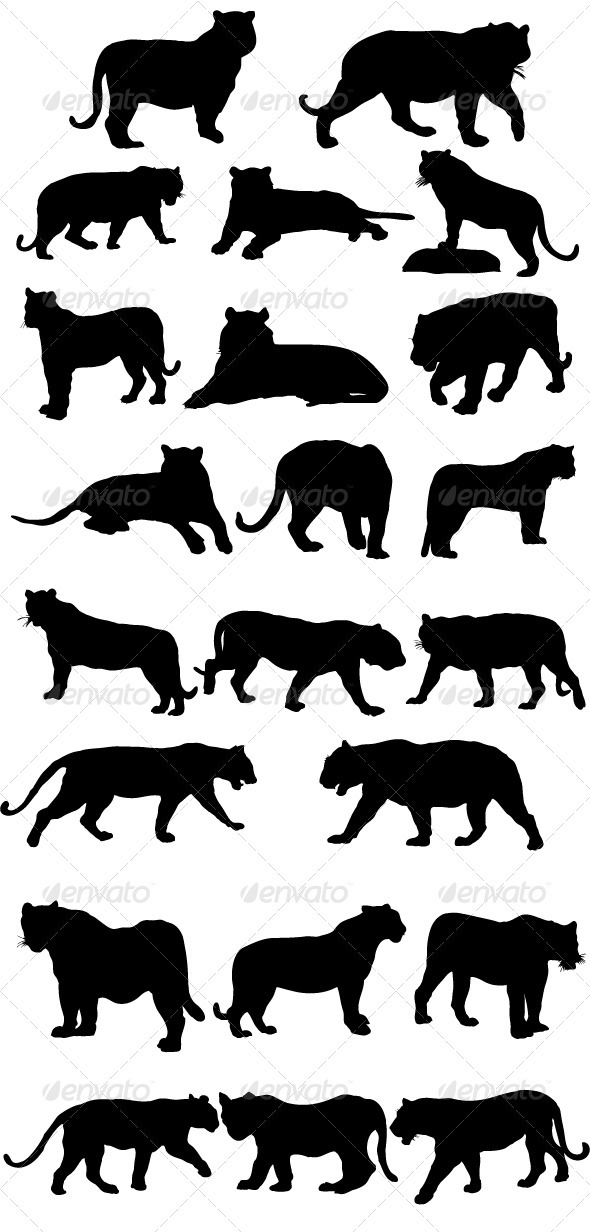 Tiger Silhouettes - Animals Characters