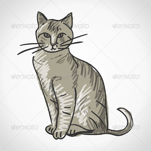 Cat Illustration - Animals Characters