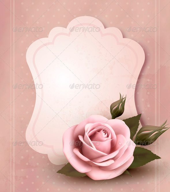 Retro greeting card with pink rose - Flowers & Plants Nature