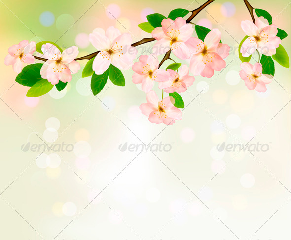 Spring background with blossoming tree brunch - Flowers & Plants Nature