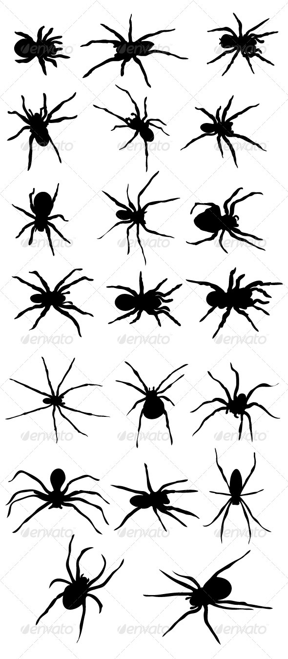 Spider Silhouttes - Animals Characters