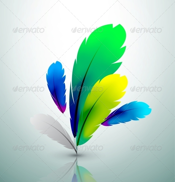 Vector colorful feather design - Backgrounds Decorative