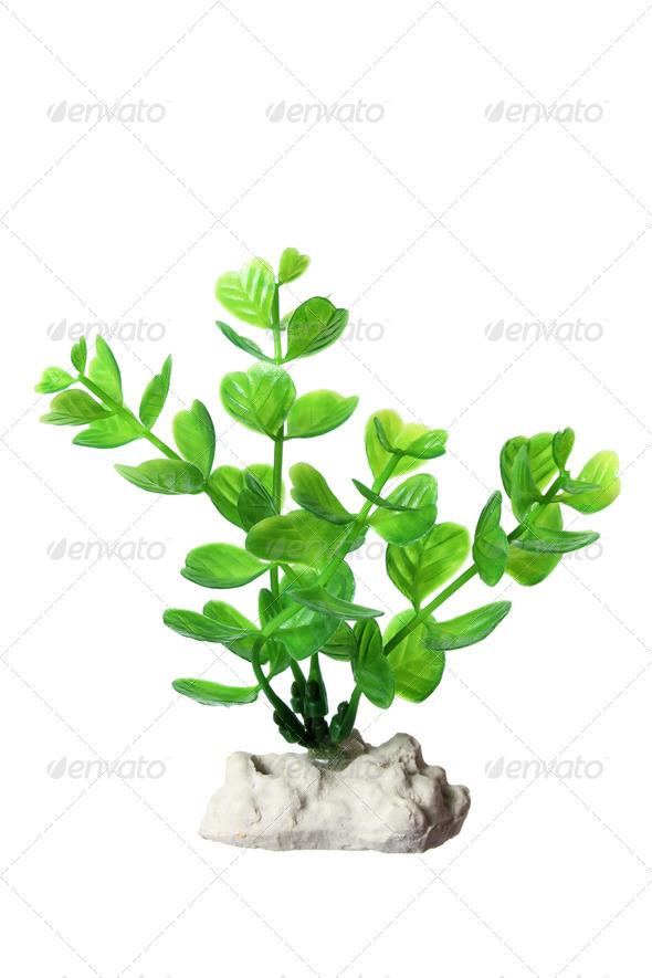 Plastic Seaweed - Stock Photo - Images