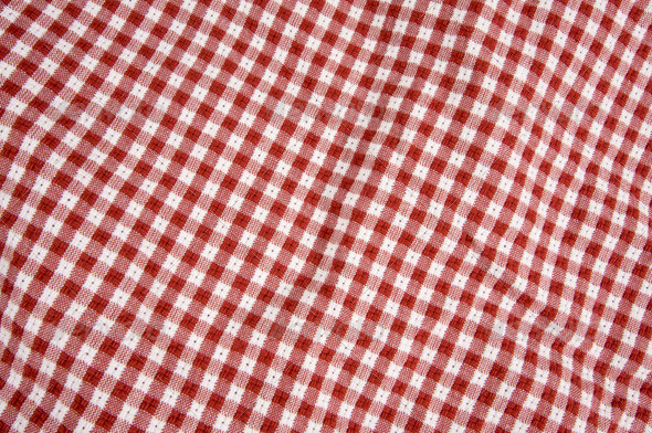 Red and White Picnic Blanket - Fabric Textures