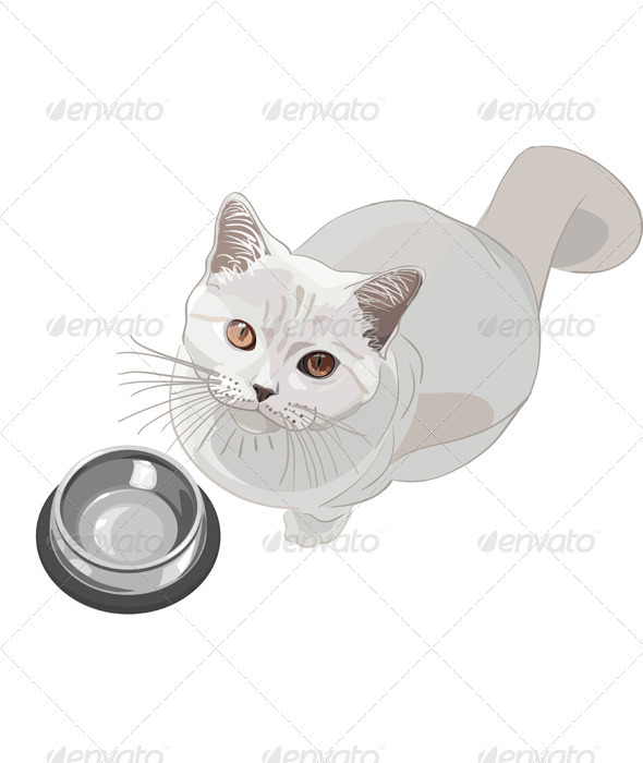 Vector cat requests that have - Animals Characters