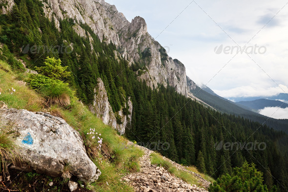 mountain slope - Stock Photo - Images
