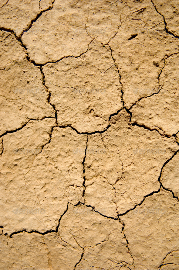 Ground Details - Nature Textures