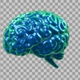 Brain Rotating - VideoHive Item for Sale